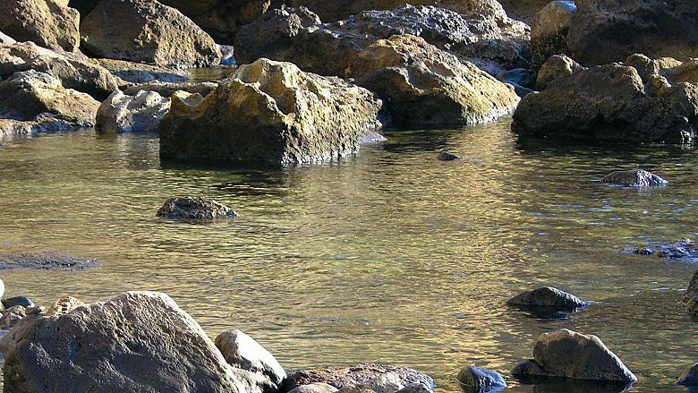 Bagno Giapponese Terme Ischia : Hotel floridiana terme ischia italia expedia